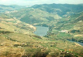 douro.jpg(José Nogueira dos Reis)